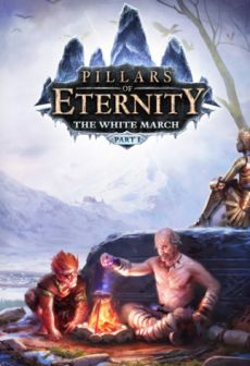 Get Free Pillars of Eternity - The White March Expansion Pass