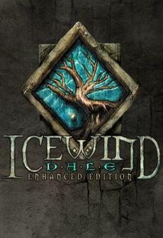 Get Free Icewind Dale: Enhanced Edition