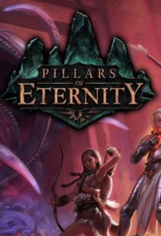Get Free Pillars of Eternity - Champion Edition