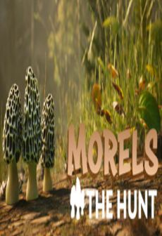Get Free Morels: The Hunt